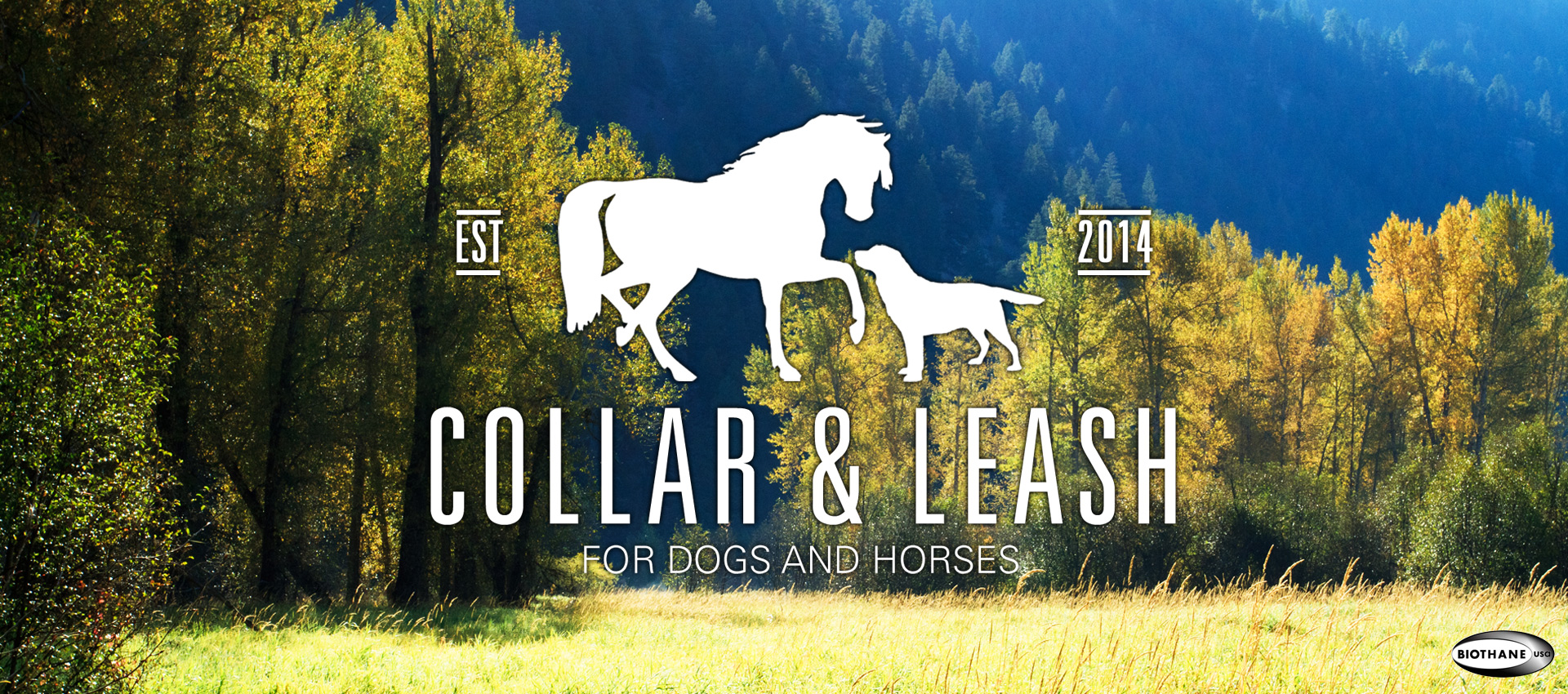 Collarandleash.de Hintergrundbild für die Homepage